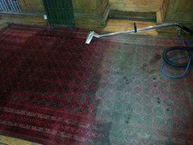 professional carpet cleaning devon