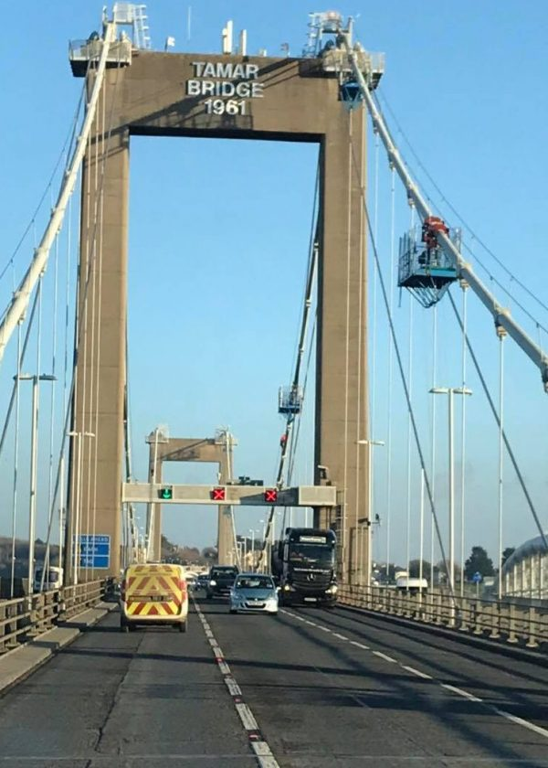 bird control bridges