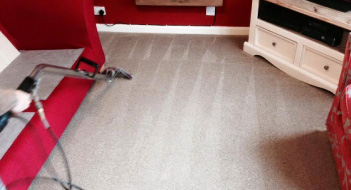 professional carpet cleaning plymouth